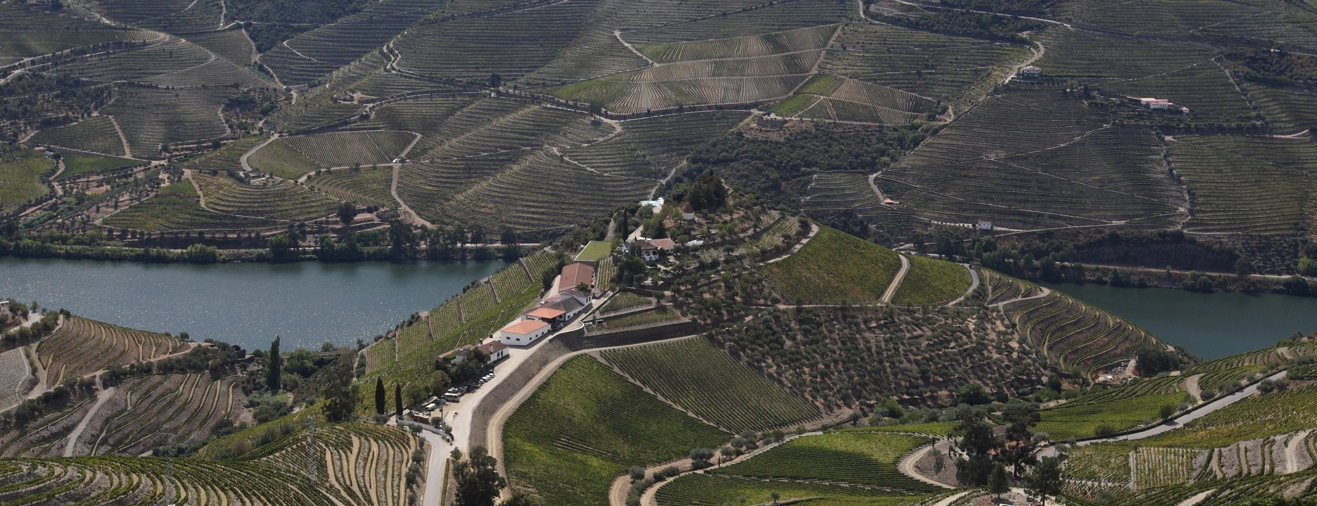 Food & Wine Tours in Portugal