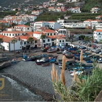 Madeira Sidecar & Private Cruise