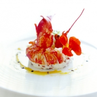 culinary-tours-in-portugal-arc-restaurant