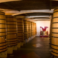Lisbon & Alentejo Wineries Tour