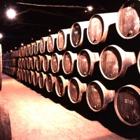 Douro Valley wineries & Vintage Vessel cruise